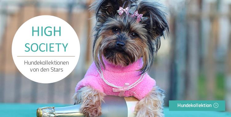 Hundemantel und Starkollektionen kaufen auf Hundemantel-mode.de kaufen
