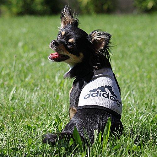 Hundeshirt, Sommershirt für Hunde ADIDOG - extra leicht - für den sportlichen Typ, XL, Rosa - 7